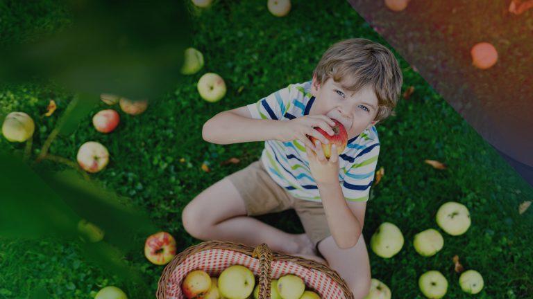 Frutas especiais