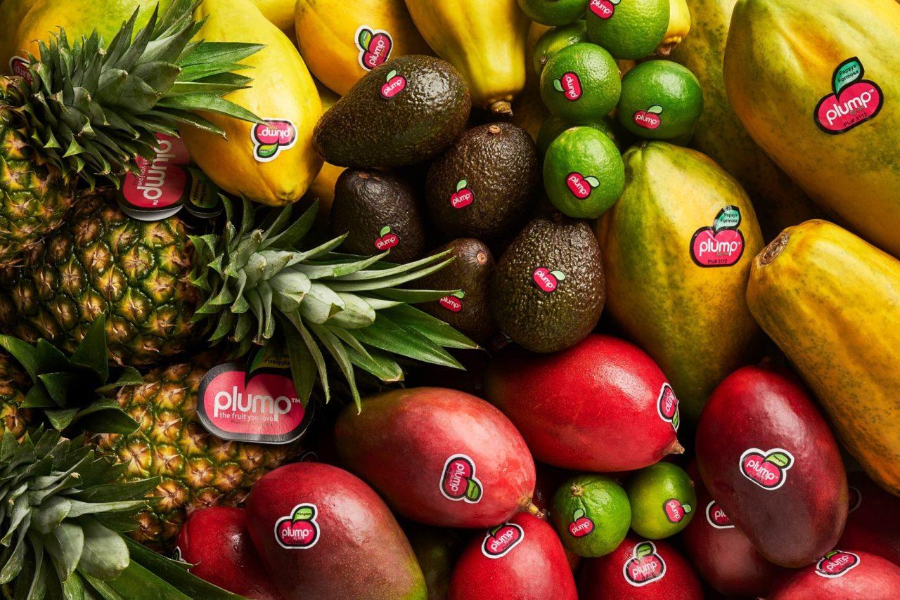 Frutas e Legumes em Natureza